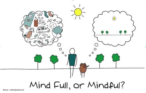guide-to-mindfulness