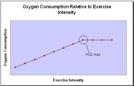 v02-max-maximum